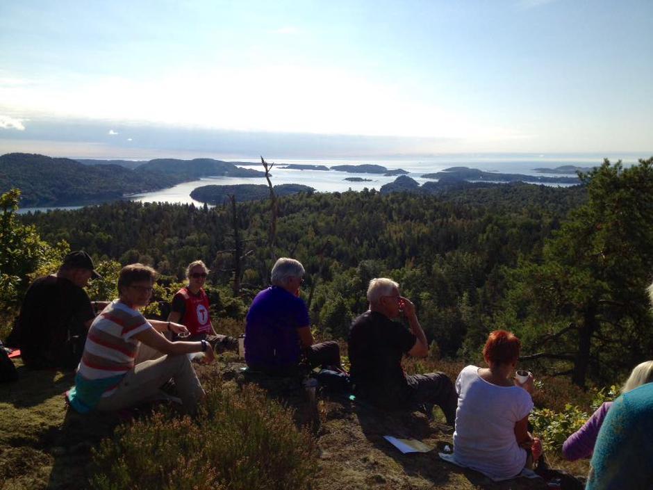 Utsikt fra Brudalsåsen