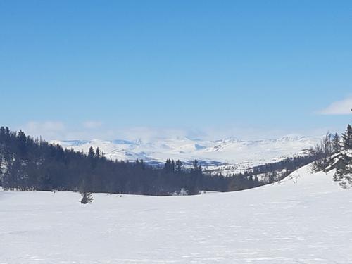 Utsikt mot Jotunheimen frå Saursløypa