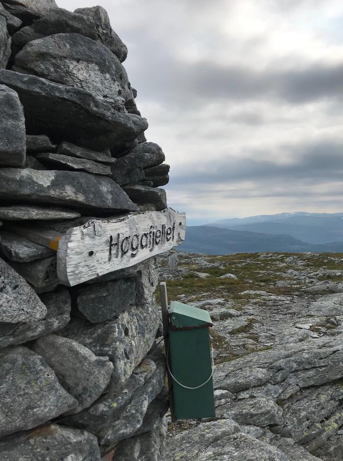 Torsdag 13.8: Høgafjellet (868 moh). Utsikt sør(øst).