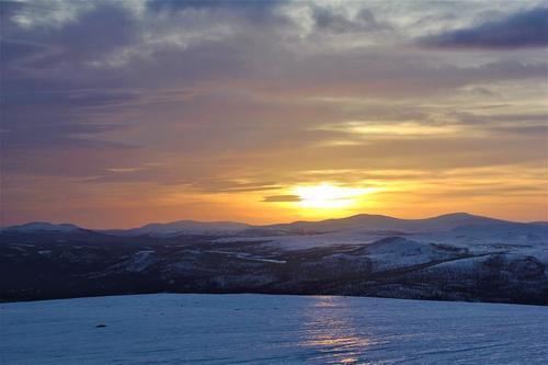 Uke 10: Føremelding for Alvdal Vestfjell