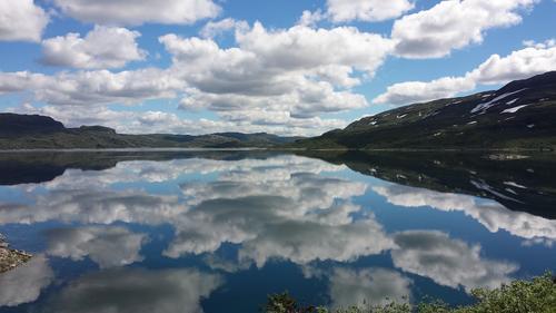 Gladnyheter fra Hardangervidda