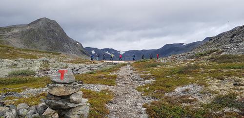 Årets hestesko i Tafjordfjella