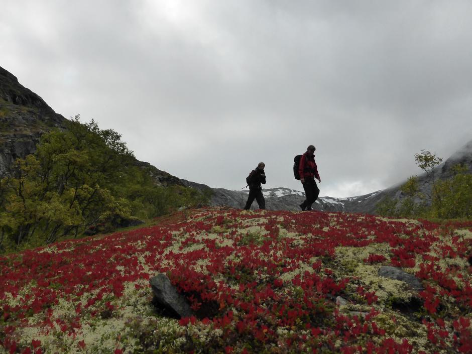 På veg mot Danskehytta frå Rødalen i Tafjord