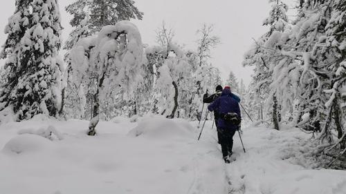 Formiddagstur Lillehammer