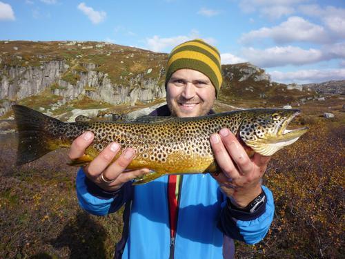 Skitt fiske i Ryfylkeheiene