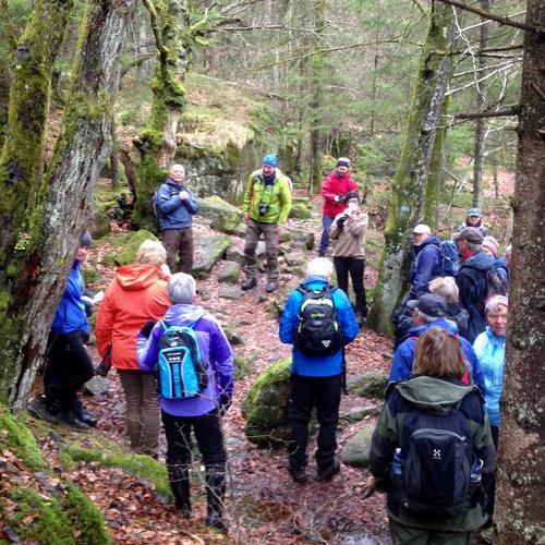 Mange på tur i Eikedalsmarka 17. april