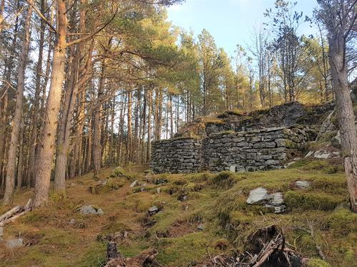 Flott steinmur etter gammel skjeneflor?