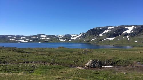 Uke 28: Føremelding for Hardangervidda