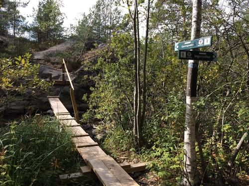 Broen til Kjerringnebba
