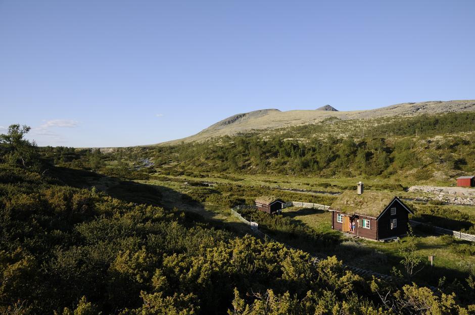 Raudsjødalen, i vakre Femundsmarka. Dra dit i august eller september.