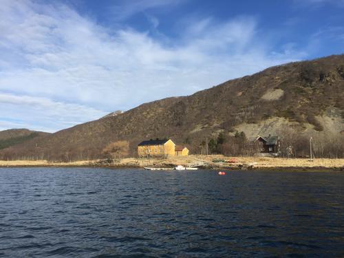 Nytt turlagstilbud på Skogsøya