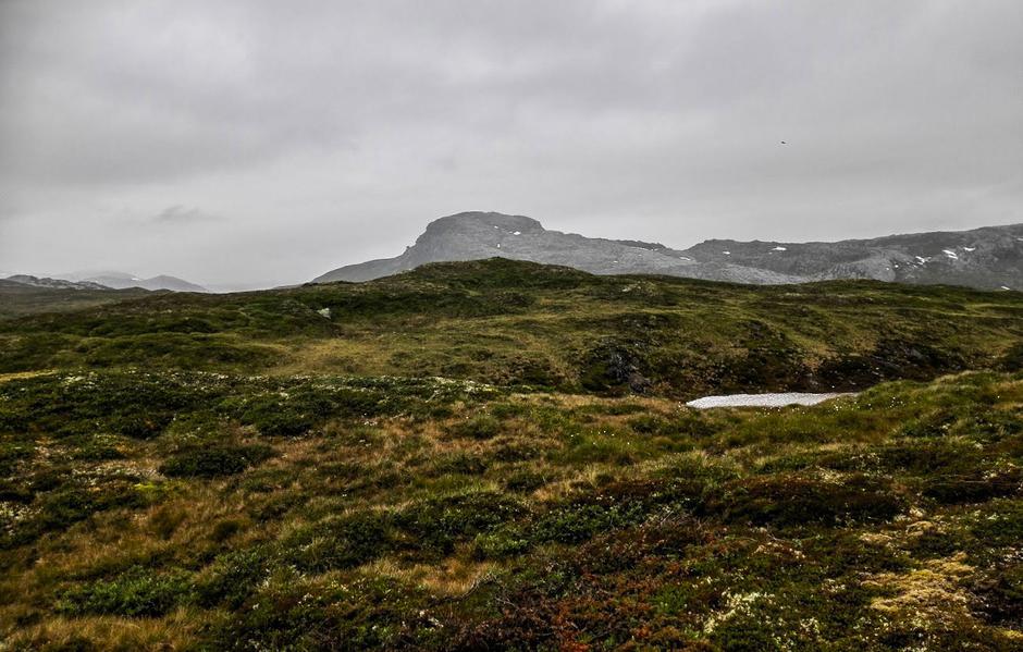 Landskap ved Viergjelet.