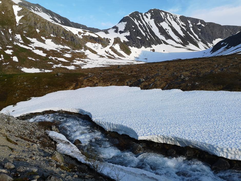 24.06.2020: I Horndalen, østover mot Helvetesbotn og Helvetestind.