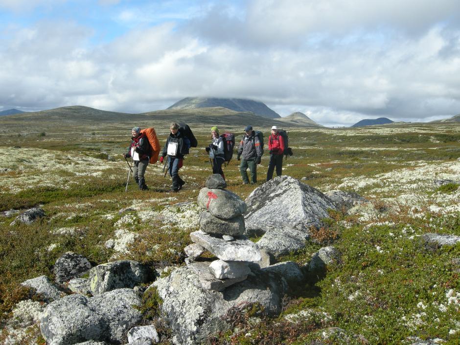 Vandregruppa, høsttur i Alvdal vestfjell