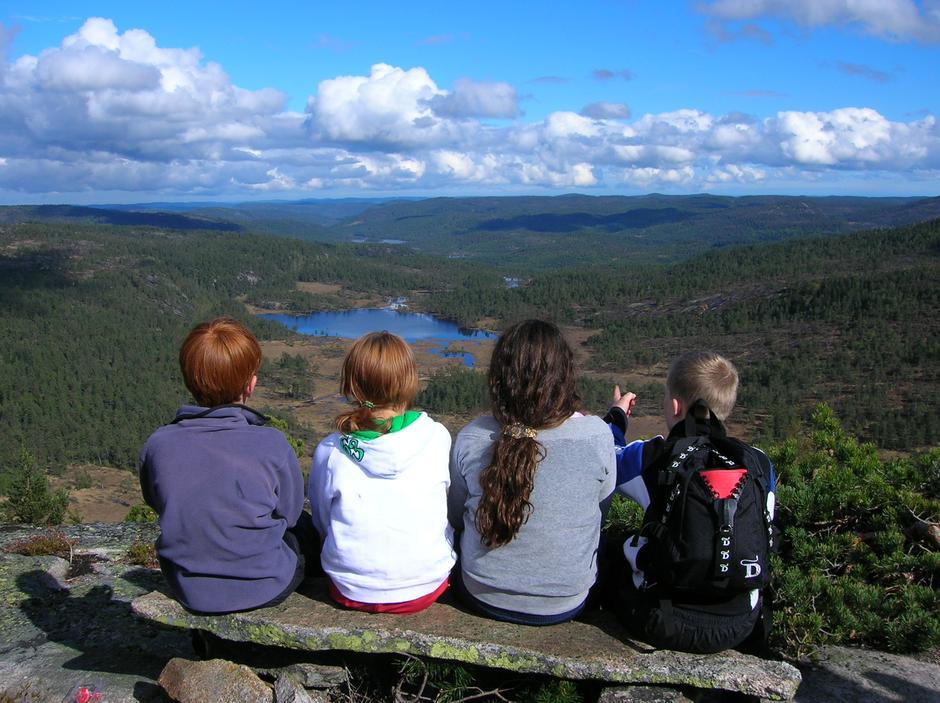 Frå Solhomfjell Naturreservat i Gjerstadskogane.