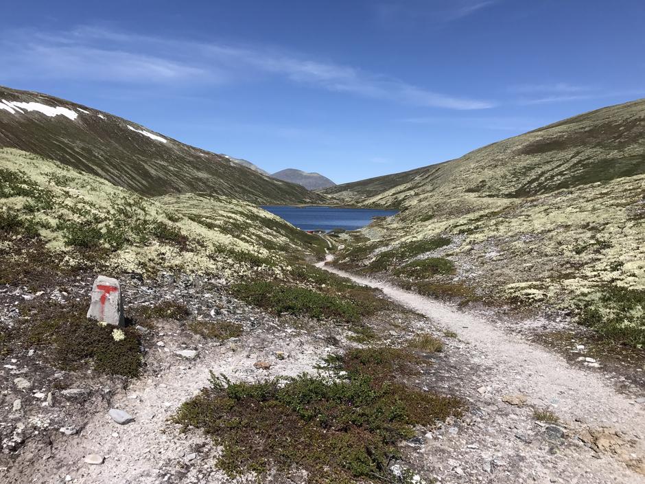 På veien mellom Eldåbu og Bjørnhollia.