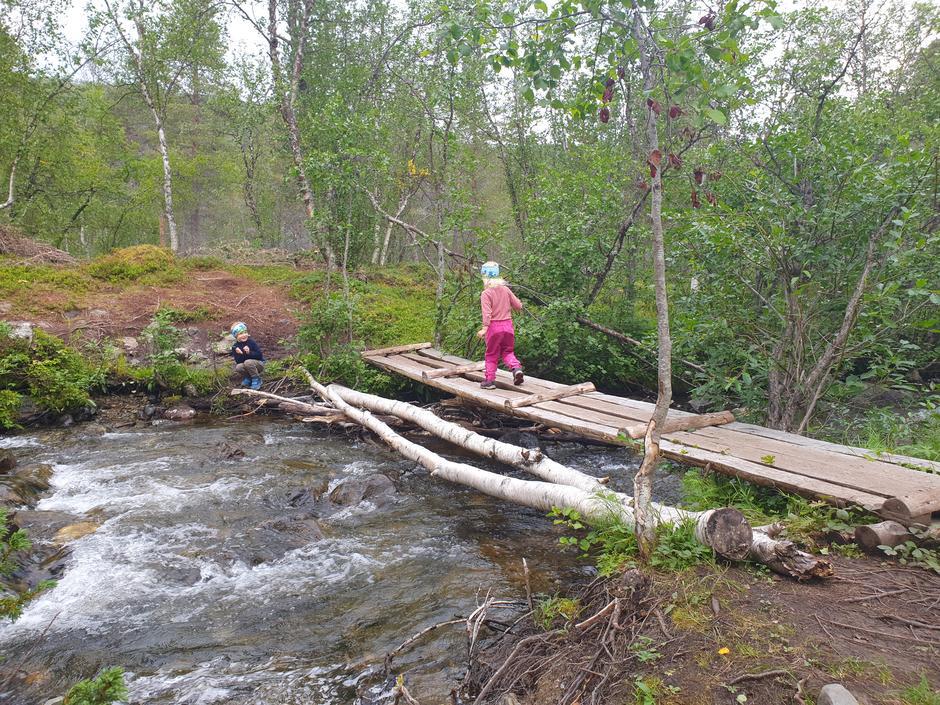 Flere elver å krysse på veien