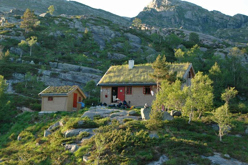 Trærne er på fremvekst i Norge, men hvor langt opp har de kommet? Nå inviterer vi alle turgåere med på å kartlegge trærne dere finner høyt til fjells. Her ved Kalvedalshytta