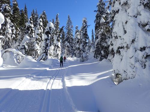 Fellestur: Tre dager i Nordmarka