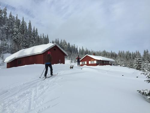 Vikkelihytta ligger vakkert til på Nordåsen. Fine skispor går forbi hytta.