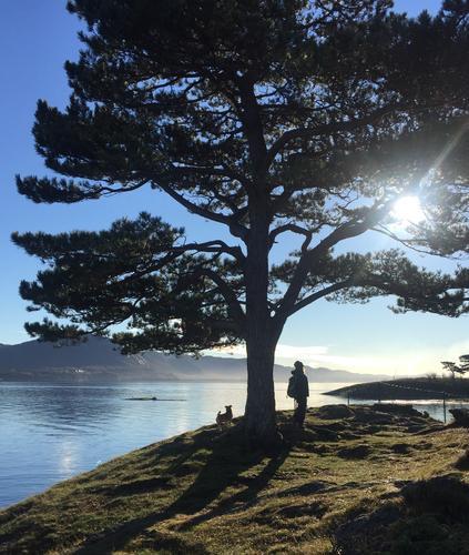 Høst, Vaulen Stavanger