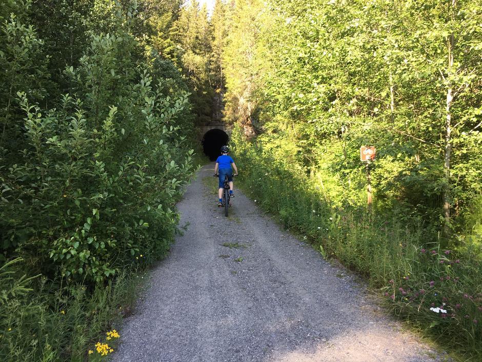 Vekterveien i Eidskog