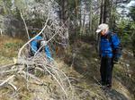 DNT Asker Turlag trenger flere frivillig til stirydding etter vinterens herjinger, noe for deg?
