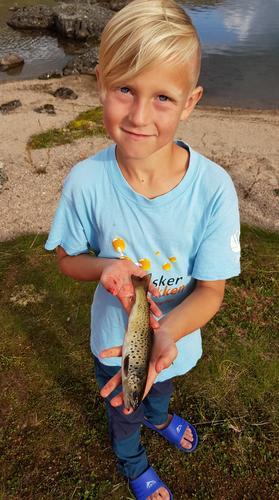 Fiske ved Håkonsbu