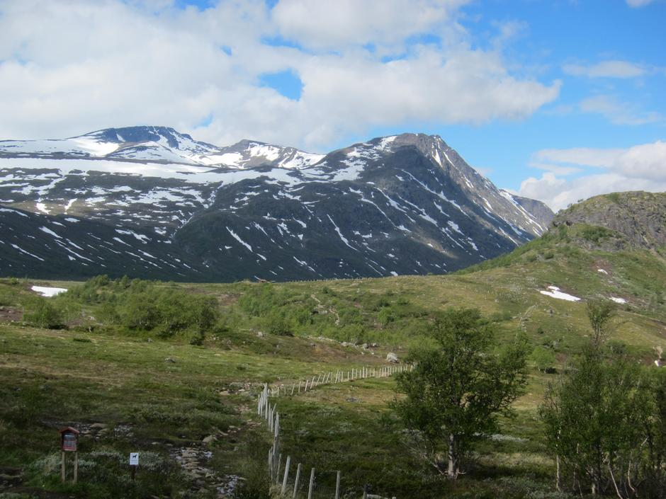 Frå stien mot Knutshø, mot Bukkehåmåren (th), Kvassryggen og Høgdebrotet
