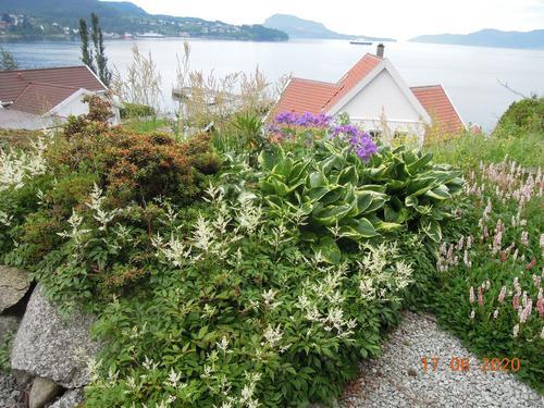 Hagen til Endre ligg like ved Hjelmelandsvågen