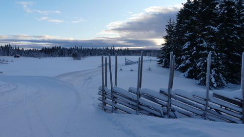Onsdagstur på ski 13.01.2021.
