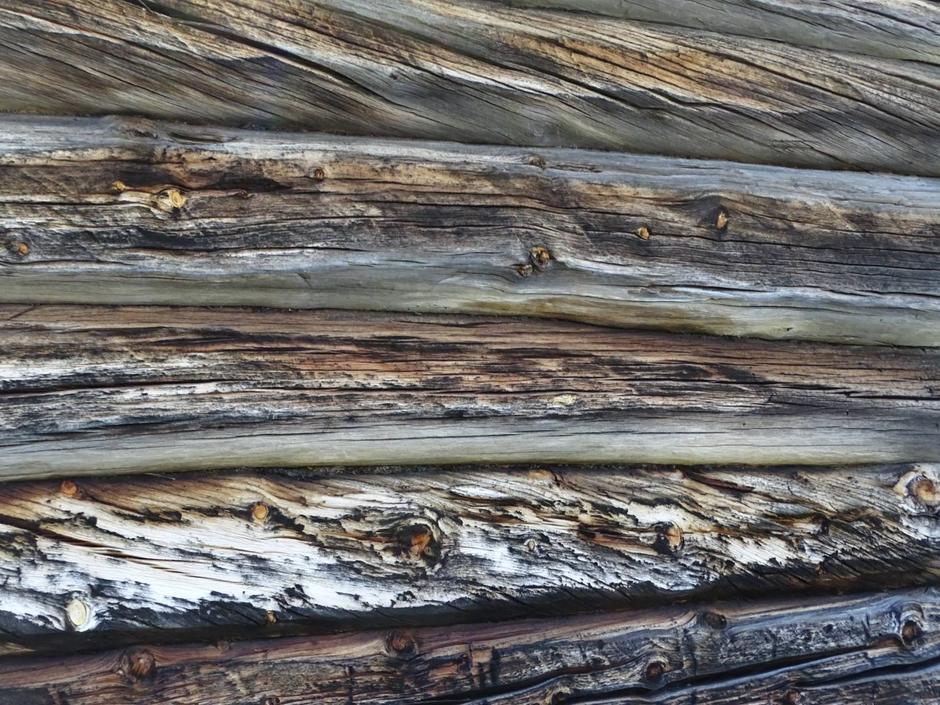 Gamle tømmervegger på Kviturdsetra