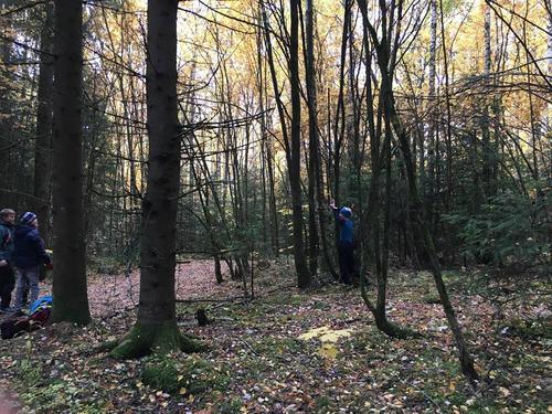 HHT vil bevare Klukhagan som nærskog!