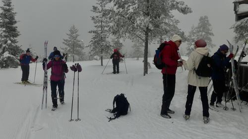 Skitur til Vollkoia/Blåmyrkoia 07.03.2018.