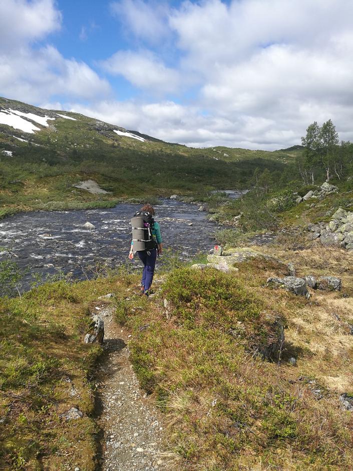 Sti på vei ned fra BT-hytten til Mjølfjell