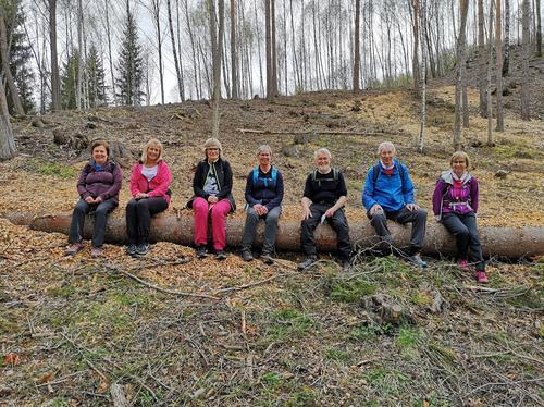 Vandring på nye stier rundt Hønefoss
