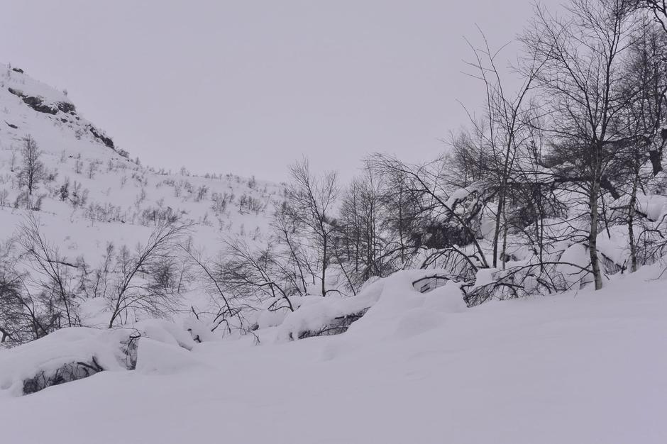 Det ble for tung tå gå på ski til Støle sist helg. Vi håper snøen får satt seg og bærer bedre en en stund. Da er dette en flott vintertur!