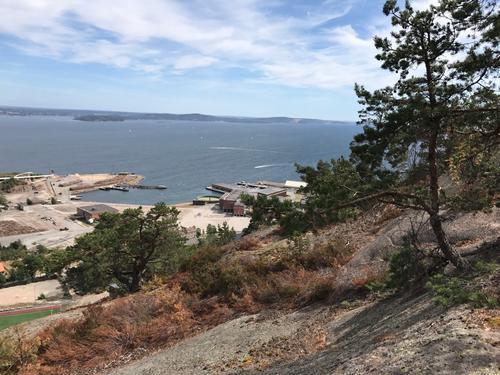 Utsikt fra Toftefjell mot den nedlagte cellulosefabrikken.