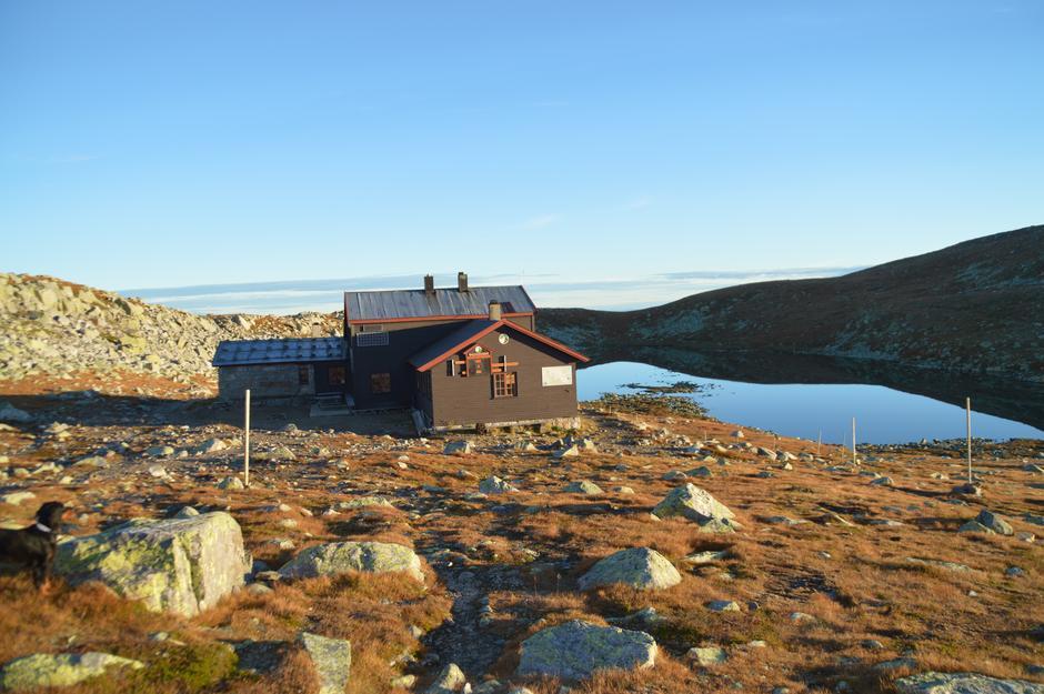 Gamle Høgevardehytta har åpen kafe hver dag i hele høstferien. Det er også 20 senger til reservasjon i gamle hytta.
