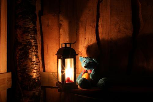 Turbo kosar seg i vintermørket