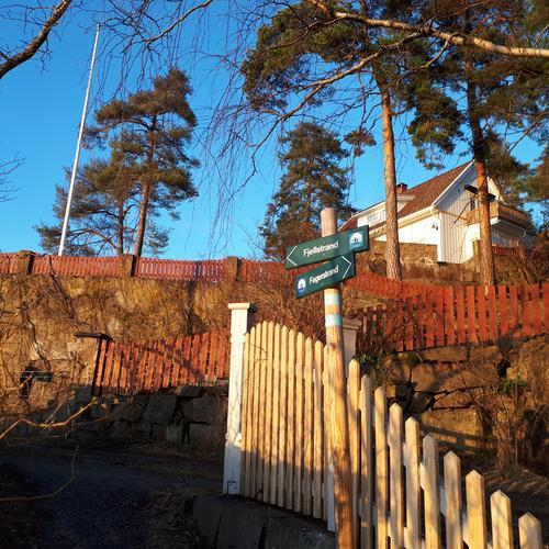 Kystien ved Svestad
