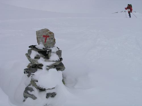 Uke 12: Føremelding for Alvdal Vestfjell