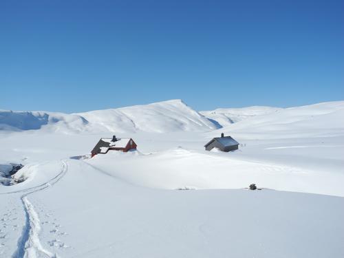 Blitt vant til vinterfjellet i Bergsdalen? Stølsheimen byr på nye muligheter.