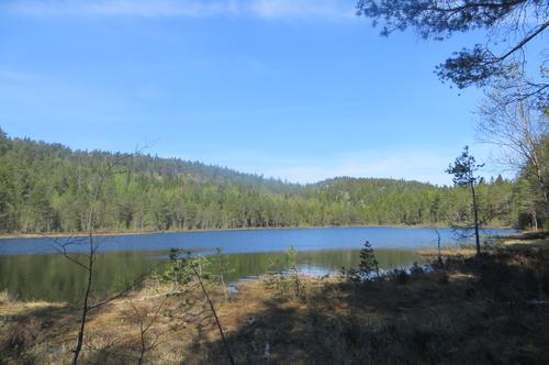 Nærturer og turforslag i Larvik