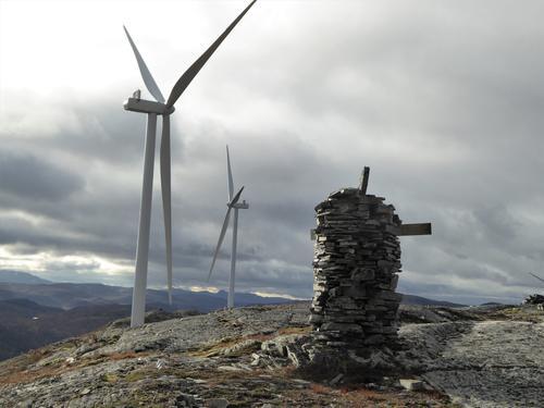 Naturen i Trøndelag har lidd nok, men nå er det et håp.
