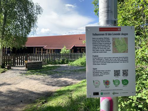 Opplev Den levende skogen - i Klukhagan