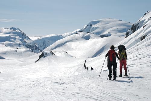 Skitur fra Hamlagrø til Kvamskogen