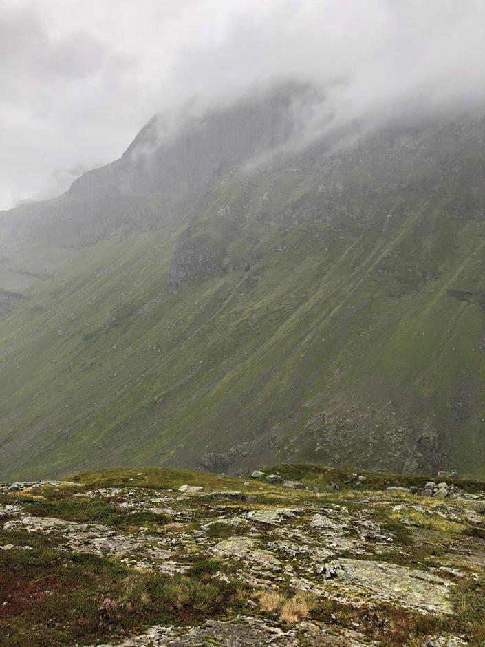 Utsikt mot Vassfjøro