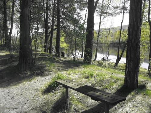 Sykkeltur langs Drammenselvas åssider