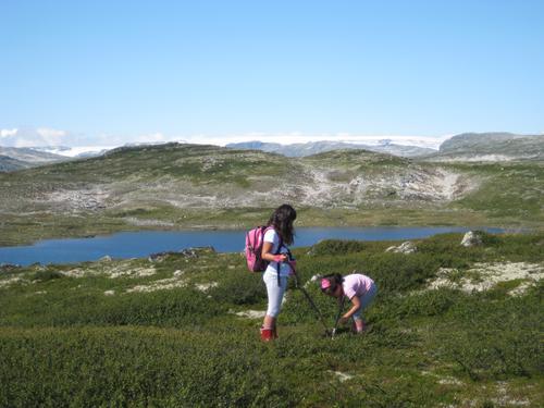 Utforsking på Hardangervidda. To søstre på første fottur på Hardangervidda fra Krækkja til Fagerheim.